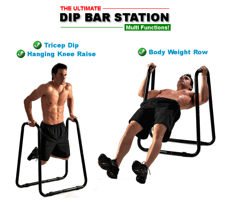 Ultimate Dip Bar Station from SPORTSCO Singapore