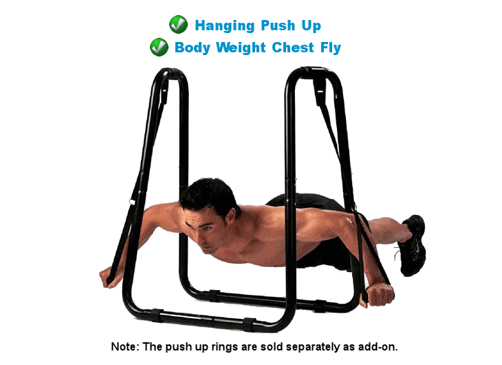 Push Up Ring from SPORTSCO Singapore