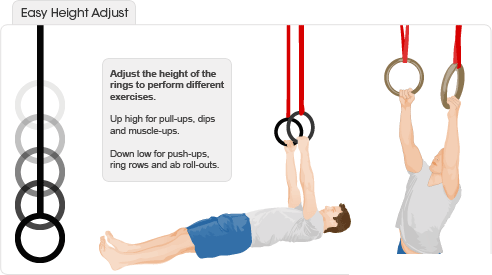 Easy Height Adjust Gym Rings