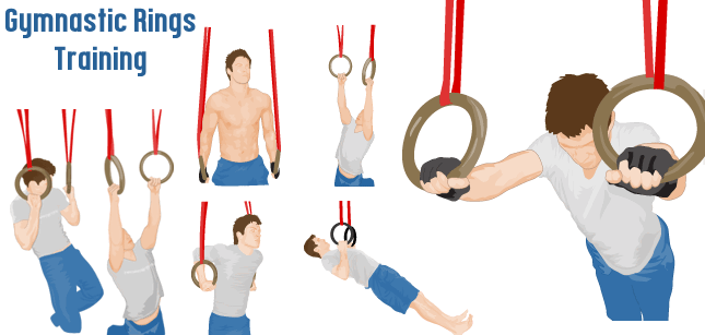 Gymnastic Rings Training