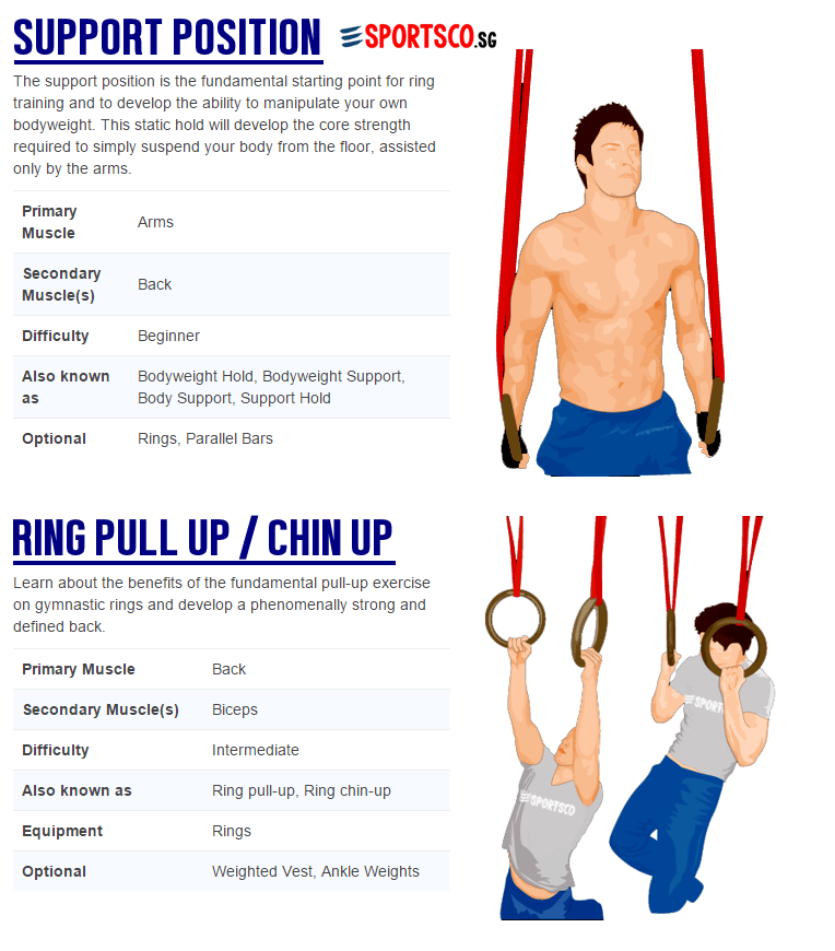 Home Exercise Equipment For Beginners: Gymnastic Ring Workouts For Beginners