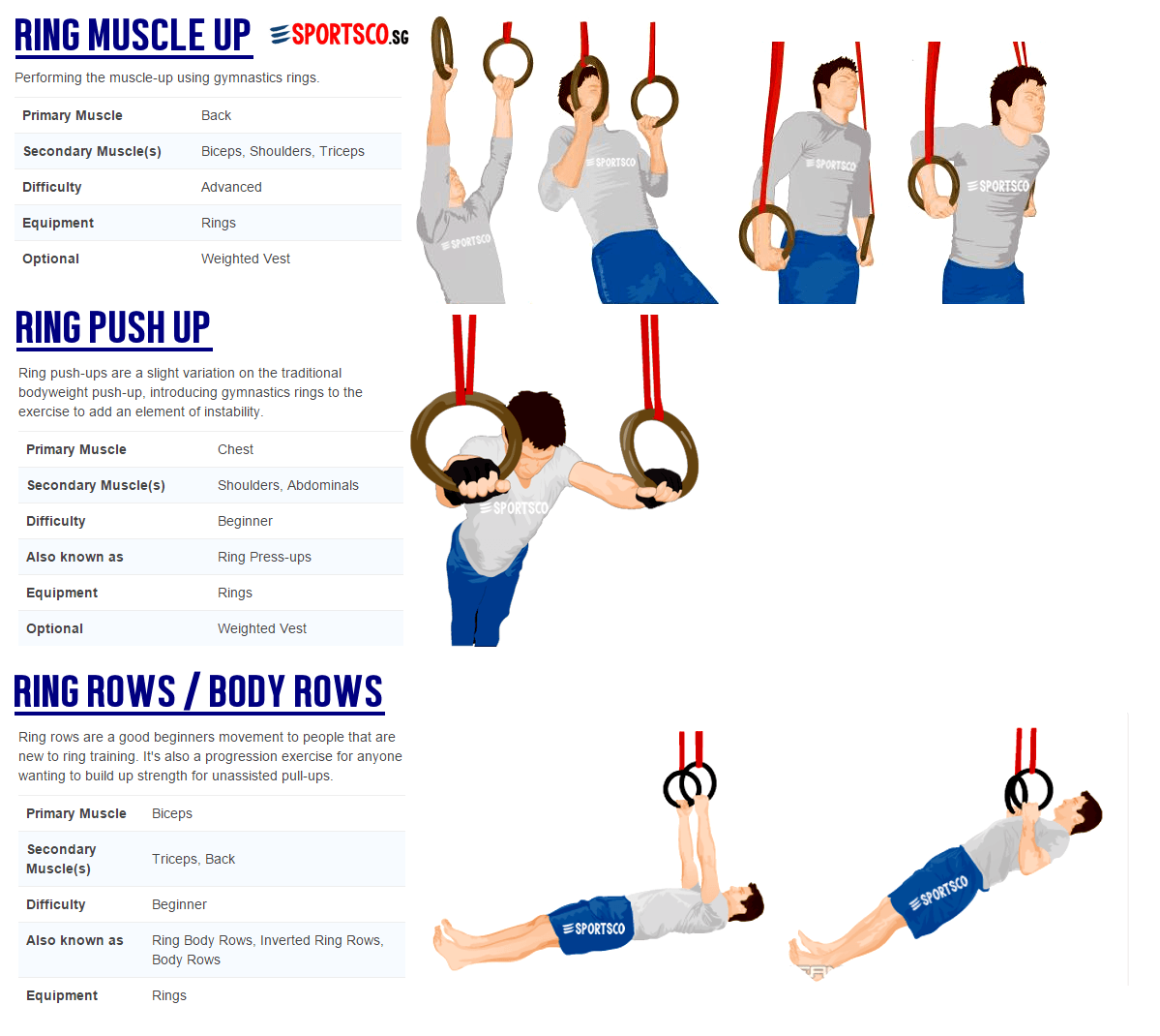 Gymnastic Ring Workout Pdf Eoua Blog