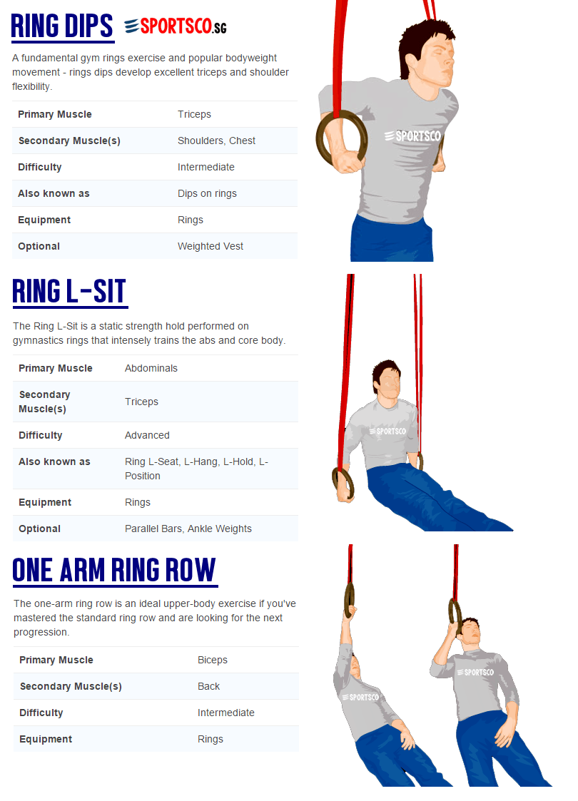 Olympic Gymnastic Rings Exercises